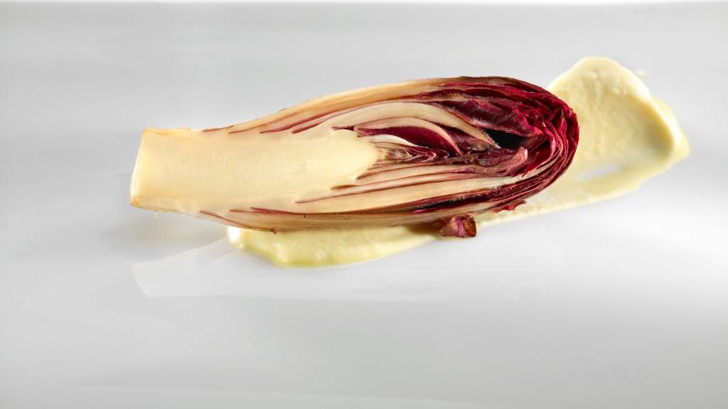33391 Endibias rojas braseadas, impregnadas con un caldo de moluscos, cardamomo y crema untuosa de pomelo con matices de azahar
