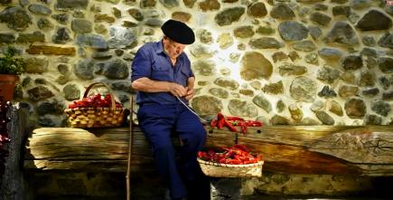 Pimiento txoricero - productos