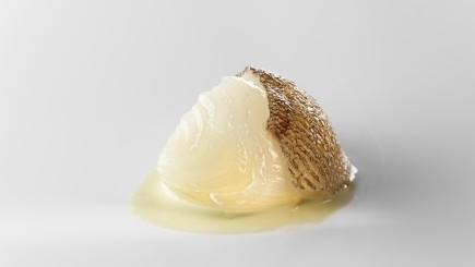 Cebolla blanca, fondo de bacalao y pimiento verde - productos