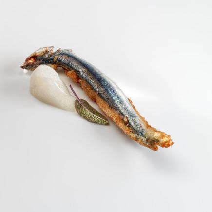 Anchoa frita, crema de avena y salvia - fritura