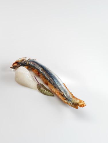 Anchoas fritas, crema de avena y salvia - kuzu